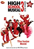img - for Disney High School Musical 3 Senior Year: The Junior Novel (Junior Novelization) book / textbook / text book