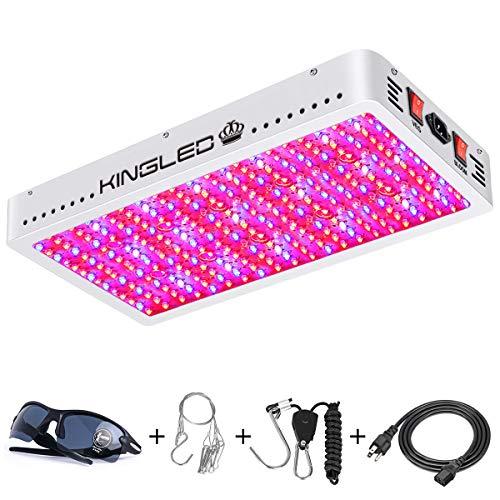 King Plus 3000W LED