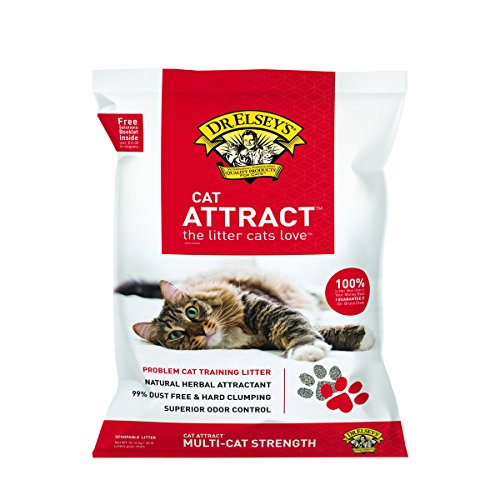 时尚产品 Precious Cat Attract Problem Training Litter, pound bag, Package may vary