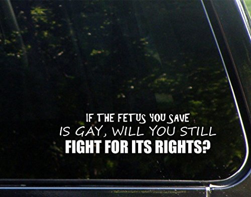 if-the-fetus-you-save-is-gay-will-you-still-fight-for-its-rights-9-x-2-1-2-bumper-sticker-for-window