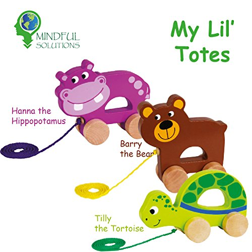 Classic Wooden Pull Toys - My Lil' Totes - Introducing Hanna the Hippopotamus, Barry the Bear and Tilly the Tortoise. Three beautiful children's toys designed for indoor and outdoor play. by Mindful Solutions
