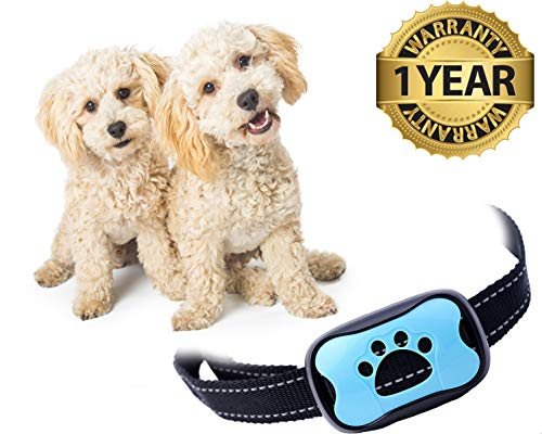 Bark Control Device Small Medium Large Dogs Upgrade Barking Training Collar Beep Levels Extremely Effective Collar Safe Anti Bark Device
