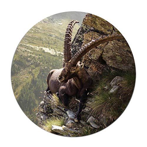 FunnyLife Nature Animals Horns Chamois Landscape Round Floor matIdeal Front or Back Door,Bathroom,Kitchen,Balcony,Entrance