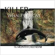 Killer Whales Orcas Mini Wall Calendar 2017 16 Month