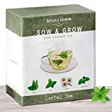 Grow 4 Herbal Tea Plants From Seed - Indoor Herb Garden Growing Kit W/ Organic Mint Seeds, Catnip Seeds, Lemon Balm & Chamomile. Complete Starter Set W/ Soil, Pots, Labels & Guide. Gardening Gift Set