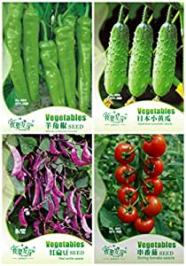 Vegetales orgánicos no modificados genéticamente Jardín 4 tipos de semillas Hierbas semillas de plantas o el jardín de DIY en maceta comestible NUEVO 3