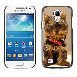 Caucho caso de Shell duro de la cubierta de accesorios de protección BY RAYDREAMMM - Samsung Galaxy S4 Mini i9190 MINI VERSION! - Cute Yorki Yorkie Terrier Dog