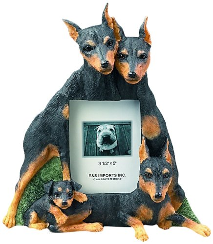 Miniature Pinscher Gift Picture Frame Holds Your Favorite 3x5 Inch Photo, A Hand Painted Realistic Looking Miniature Pinscher Family Surrounding Your Photo. This Beautifully Crafted Frame is A Unique Accent to Any Home or Office. The Miniature Pinscher Picture Frame Is The Perfect Gift For Miniature Pinscher Owners And Lovers! (Miniature Pinscher Accessories)