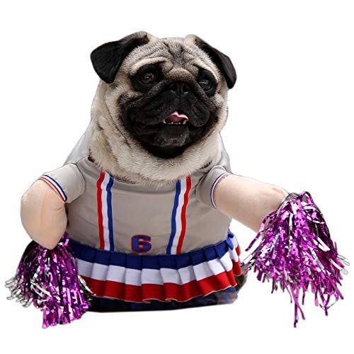 Best cheerleader dog costume large to buy in 2019