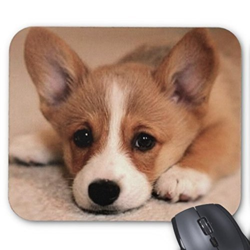 (mouse pad) lisaKim Adorable Corgi Puppy Office&Gaming Rectangle Mouse Pad Sold by Yanteng ()