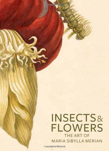 Marias Flowers - Insects and Flowers: The Art of Maria Sibylla Merian