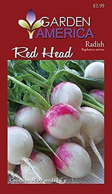 Garden America RAP-0703 Red Head Radish Seed