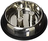 QT Dog Stainless Steel Brake-Fast Bowl, Medium, 64 Oz