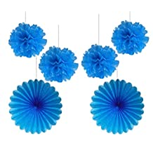 HEARTFEEL 4pcs 10 inch Turquoise Color Tissue Paper Pom Poms Mixed 2Pcs 14inch Turquoise Tissue Paper Fans Hanging Decoration Party Baby Shower Decor (Turquoise)