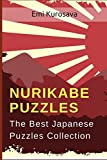 Nurikabe Puzzles: The Best Japanese Puzzles Collection (Brain Games Books for Adults)