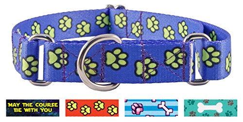 Country Brook Petz | Blue Busy Paws Featherweight Martingale Dog Collar - Extra Small (Shih Tzu Prints Paw)
