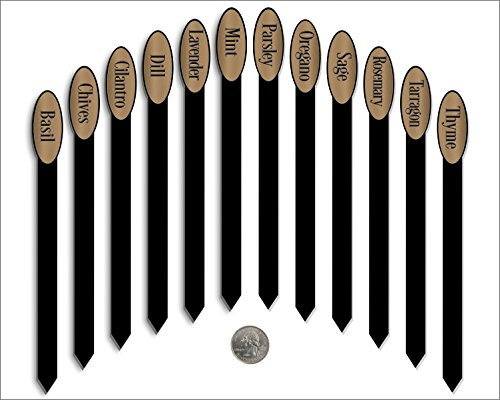 Brushed Laser - Red Tail Crafters Herb Garden Plant Markers Laser Etched Metallic Oval Stick Style 12/Set 08in Brushed Bronze/Black