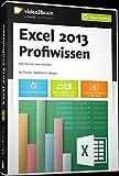 Excel 2013 - Profiwissen