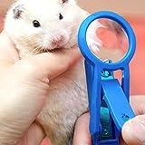 Alfie Pet by Petoga Couture - Roni Nail Clipper for Guinea Pig, Rabbit, Hamster, Bandit, Ferret, Mouse - Color: Blue
