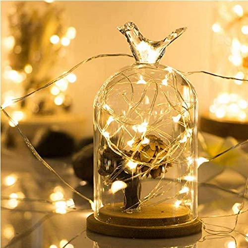 BUSOH LED Starry String Lights [10 FT ] [30 LED ] Battery Operated Copper Wire Waterproof Decorative Lights for Bedroom, Patio, Garden, Christmas Decorations Warm White