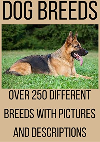 Breed Type (DOG BREEDS: Dog breeds, Dog training, Dog names and Dog descriptions with dog breeds history. Over 250 diferent dog breed types.)