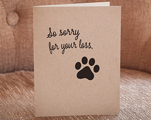 Amazon so sorry for your loss paw print letterpress so sorry for your loss paw print letterpress greeting card m4hsunfo
