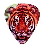 "Unique and Custom "".76 mm Thick - Medium Gauge Hard Plastic - Round Tip"" Guitar Pick w/ Wildlife Animal Realistic Jungle Tiger Cat Face {Orange, Red, White & Black - 12 Picks Dozen Bulk Multipack}"