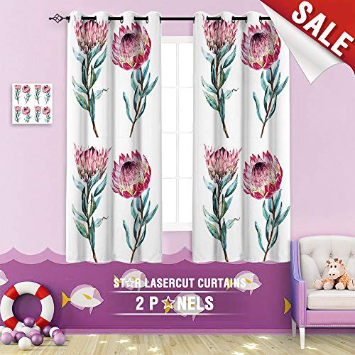 Big datastore home Blackout Curtain, Protea Protea Flower Abstract Art Australia banksia Beautiful Bloom Branch Bright 84 x 72 inch Grommet Curtains Kids Bedroom, (Bedroom White Wicker Australia Furniture)
