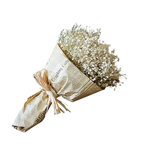 DICPOLIA Real Flower Gypsophila Natural Dried Flower Baby's Breath Home Decor Dried Flower Sky Star Holding Flowers (A) ()