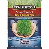 PENNINGTON SEED 100526659 Sun/Shade Seed Mix