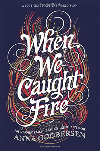 Download When We Caught Fire PDF