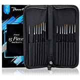 Precision Detail Paint Brush Set Of 15 - Miniature Painting Kit Includes Zippered Case - For Acrylic, Watercolor, Oil - Instant Perfection For All Your Fine Detail And Miniature Painting Needs