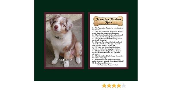 84de99e7cdce1 Amazon.com: Dog Rules Australian Shepherd Wall Decor Pet Saying Dog ...