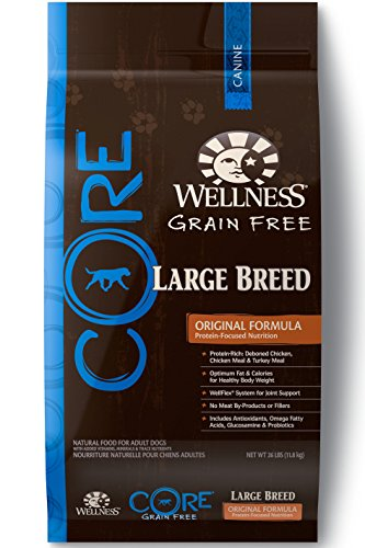 Wellness CORE Natural Dry Grain Free Large Breed Dog Food, Chicken & Turkey, 26-Pound Bag