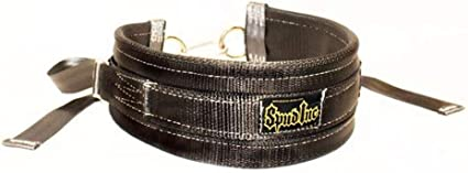 Inc. Spud Belt Squat Belt for Weight Lifting Strength Training and Power Lifting by Spud