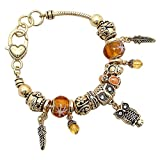 Best Rosemarie Collections Charm Bracelets - Rosemarie Collections Women's Beautiful Beaded Charm Bracelet Wise Review