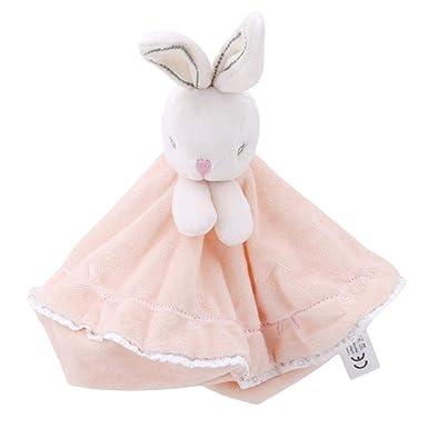 Amazon.com: Bonito chupete para bebé, toalla calmante para ...