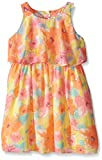 Pogo Club Little Girls Monet's Garden Chiffon Dress with Bag Vitamin C Medium/5/6