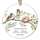 We're Expecting! Christmas Ornament Baby Due 2020 Pregnancy Announcement Baby Bird New Baby Gift, 3' Flat Circle Expecting Parents Christmas Ornament with Gold Ribbon & Free Gift Box OR00083 Worthe