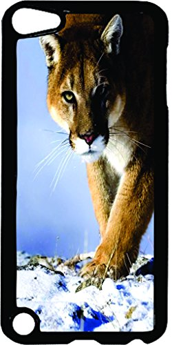 Cougar in the Snow-TM Apple iPod 5 Black Plastic Case Made in the USA