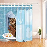 QCWN Lovely Cat Shower Curtain Funny Kitten Showering Cat Animals Bathing Decor Fantastic Bath Decorations with Free Hooks (1, 70''x70'')