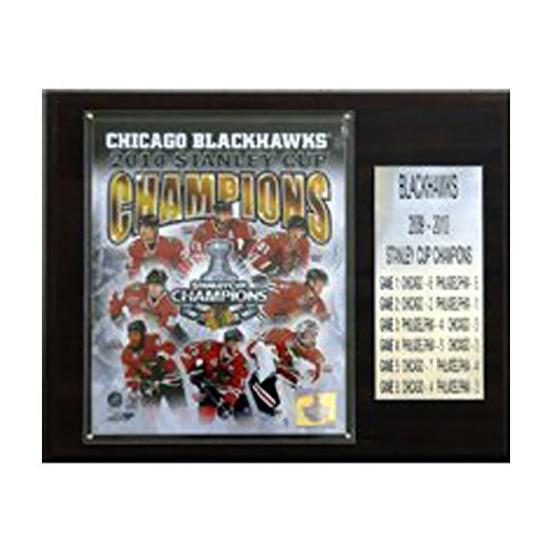 NHL Blackhawks 2009-010 Stanley Cup Champions Plaque