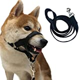 Charmsong Headcollar No Pain No Pull With Leash Large Breed Halter Painless Gentle Control Training Dog Collars Black L