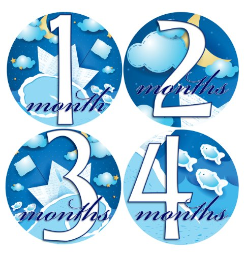 Midnight Bodysuit - MIDNIGHT SKIES 1-12 Month Baby Monthly One Piece Stickers Baby Shower Gift Photo Shower Stickers
