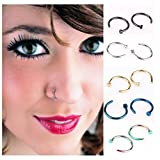 ZYG Pack of 10pcs Assorted Stainless Steel Body Jewelry Piercing Nose Ring Hoop