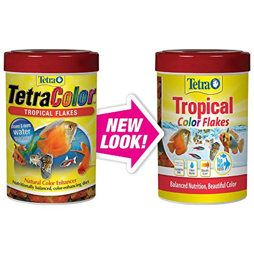 - TetraColor Tropical Flakes with Natural Color Enhancer, 0.42-Ounce
