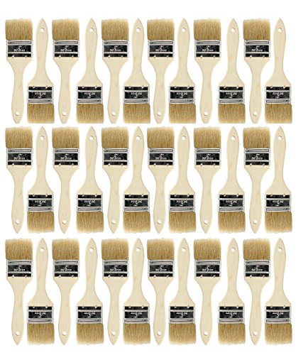 Brush Paint Bristle China (Chip Paint Brushes for Paint, Stains,Varnishes,Glues,Gesso (36ea-2