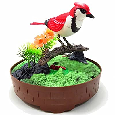 AZ Imports Animated Chirping Bird in Bird Cage: Toys & Games