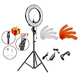 Neewer 12-inch Inner/14-inch Outer LED Ring Light and Stand Kit for Camera and Cellphone YouTube Video Shooting,Makeup Tutorials and Selfie Filming(PLUS: Selfie Stick,Phone Lens,Cable for iPhone)