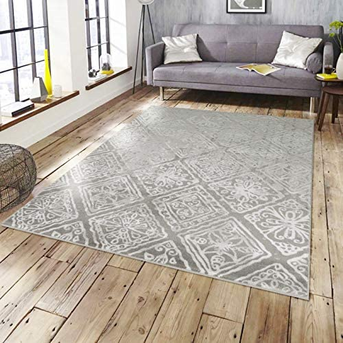 Rugs and Decor Summit Collection SMT 116 Area Rug Gray Farmhouse Distressed Carpets Living Room Dining Room 8×10 Actual Size is 7 .4 x10 .6